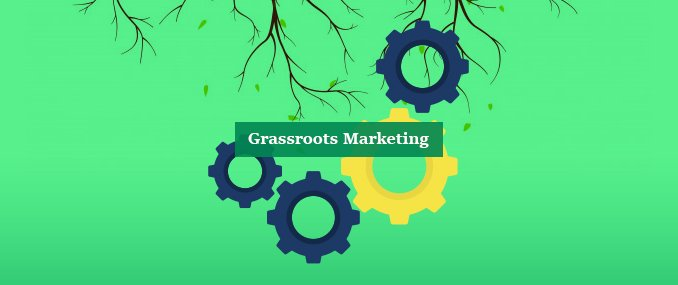 Optimize Grassroots Marketing